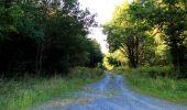 Trail Walk DAMPLEUX - en forêt de Retz_80_sur la Route Tortue et la Route Droite - Photo 49