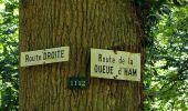 Trail Walk DAMPLEUX - en forêt de Retz_80_sur la Route Tortue et la Route Droite - Photo 235
