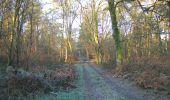 Trail Walk SAINT-JEAN-AUX-BOIS - en forêt de Compiègne_33_12_2019_les Tournantes de l'étang Saint-Jean et des Prés Saint-Jean - Photo 169