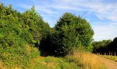 Randonnée Marche HARAMONT - en forêt de Retz_79_08_2019_vers Taillefontaine et Retheuil par les lisières - Photo 35