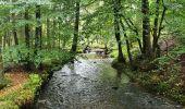 Trail Walk Sainte-Ode - rando lavacherie 6/10/2020 - Photo 4