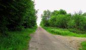 Randonnée Marche COYOLLES - en forêt de Retz_78_les rayons du Rond Capitaine - Photo 147