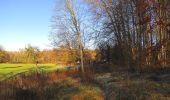 Trail Walk SAINT-JEAN-AUX-BOIS - en forêt de Compiègne_33_12_2019_les Tournantes de l'étang Saint-Jean et des Prés Saint-Jean - Photo 3
