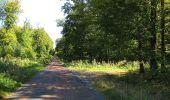 Trail Walk DAMPLEUX - en forêt de Retz_80_sur la Route Tortue et la Route Droite - Photo 301