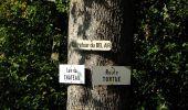 Trail Walk DAMPLEUX - en forêt de Retz_80_sur la Route Tortue et la Route Droite - Photo 156