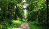Randonnée Marche HARAMONT - en forêt de Retz_79_08_2019_vers Taillefontaine et Retheuil par les lisières - Photo 62