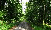 Randonnée Marche HARAMONT - en forêt de Retz_79_08_2019_vers Taillefontaine et Retheuil par les lisières - Photo 58