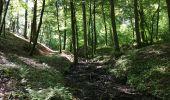 Randonnée Marche Havelange - Bois, Rivière et champs - Photo 17