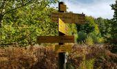 Trail Walk AYDAT - Les trois puys - Photo 15