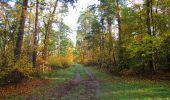 Trail Walk SAINT-JEAN-AUX-BOIS - en forêt de Compiègne_19_le Puits d'Antin_les Mares St-Louis_La Muette - Photo 183