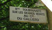 Randonnée Marche SAINT-JEAN-AUX-BOIS - en forêt de Compiègne_2_ruines gallo-romaines de Champlieu_les Petits Monts - Photo 111
