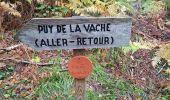 Trail Walk AYDAT - Les trois puys - Photo 4