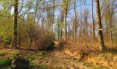 Randonnée Marche LONGPONT - en forêt de Retz_77_Longpont_Puiseux en Retz_AR - Photo 101