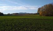 Trail Walk SENTHEIM - Sentheimtour Covid série 2 - Photo 8
