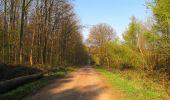 Randonnée Marche LONGPONT - en forêt de Retz_77_Longpont_Puiseux en Retz_AR - Photo 120