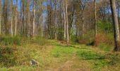 Randonnée Marche LONGPONT - en forêt de Retz_77_Longpont_Puiseux en Retz_AR - Photo 68