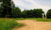 Randonnée Marche COYOLLES - en forêt de Retz_78_les rayons du Rond Capitaine - Photo 113