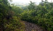 Trail Walk RIVIERE-SALEE - JOUBADIÈRE - MORNE CONSTANT - PAGERIE - Photo 47