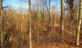 Trail Walk PIERREFONDS - en forêt de Compiègne_24_Tournantes sur le Voliard et sur la Fortelle_chaussée Brunehaut - Photo 40