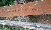 Randonnée Marche NIEDERBRUCK - niederbruck lochberg circuit - Photo 5