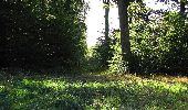Trail Walk DAMPLEUX - en forêt de Retz_80_sur la Route Tortue et la Route Droite - Photo 177