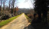 Trail Walk PIERREFONDS - en forêt de Compiègne_24_Tournantes sur le Voliard et sur la Fortelle_chaussée Brunehaut - Photo 152