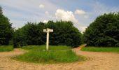 Randonnée Marche COYOLLES - en forêt de Retz_78_les rayons du Rond Capitaine - Photo 118