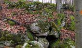 Trail On foot VIEUX-MOULIN - en forêt de Compiègne_23_la Grotte des Ramoneurs_le Mont Berny - Photo 117