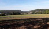 Trail Walk Profondeville - Le sentier géologique et pédologique de Profondeville  - Photo 9