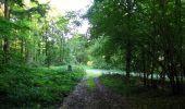 Randonnée Marche HARAMONT - en forêt de Retz_79_08_2019_vers Taillefontaine et Retheuil par les lisières - Photo 9