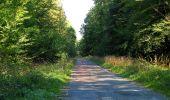 Trail Walk DAMPLEUX - en forêt de Retz_80_sur la Route Tortue et la Route Droite - Photo 260
