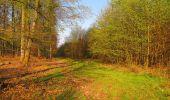 Randonnée Marche LONGPONT - en forêt de Retz_77_Longpont_Puiseux en Retz_AR - Photo 147