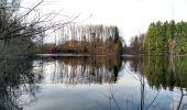 Trail Walk ECROMAGNY - 16-02-20 Ecromagny : circuit Epoissets + étangs de la Chaussée - Photo 11