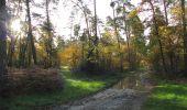 Trail Walk SAINT-JEAN-AUX-BOIS - en forêt de Compiègne_19_le Puits d'Antin_les Mares St-Louis_La Muette - Photo 169