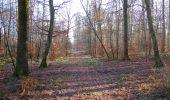 Trail Walk SAINT-JEAN-AUX-BOIS - en forêt de Compiègne_33_12_2019_les Tournantes de l'étang Saint-Jean et des Prés Saint-Jean - Photo 73