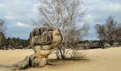 Randonnée Marche NOISY-SUR-ECOLE - Boucle les trois pignons Fontainebleau - Photo 10