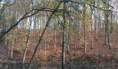 Randonnée Marche nordique Arlon - Wolkrange - Photo 4