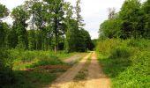 Randonnée Marche COYOLLES - en forêt de Retz_78_les rayons du Rond Capitaine - Photo 155