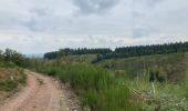 Randonnée Marche La Roche-en-Ardenne - Ramee  - Photo 12