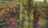 Trail Walk CHAGEY - 70 Chagey le menhir - Photo 3