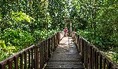 Randonnée Marche Maison de la Forêt - Trace du bras David - Photo 1
