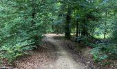 Trail Mountain bike Saint-Hubert - Après plus de 2 ans sans faire de vélo 🙄 - Photo 1