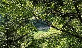 Trail Walk METZERAL - Steinabruck - Le Hohneck et ses 3 lacs Fischboedle, Altenweiher et Schiessrothried - Photo 23