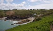 Randonnée Marche PLOGOFF - 2019 06 14 Baie Trépassés Penharn - Photo 5