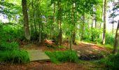 Randonnée A pied VILLERS-COTTERETS - le GR11A  dans la Forêt de Retz  - Photo 71