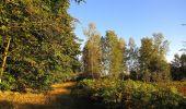 Trail Walk DAMPLEUX - en forêt de Retz_80_sur la Route Tortue et la Route Droite - Photo 13