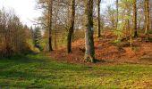Randonnée Marche LONGPONT - en forêt de Retz_77_Longpont_Puiseux en Retz_AR - Photo 153