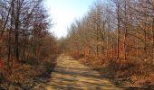 Trail Walk PIERREFONDS - en forêt de Compiègne_24_Tournantes sur le Voliard et sur la Fortelle_chaussée Brunehaut - Photo 21