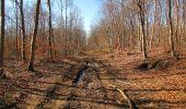 Trail Walk PIERREFONDS - en forêt de Compiègne_24_Tournantes sur le Voliard et sur la Fortelle_chaussée Brunehaut - Photo 142