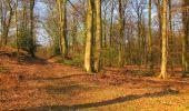 Randonnée Marche LONGPONT - en forêt de Retz_77_Longpont_Puiseux en Retz_AR - Photo 151